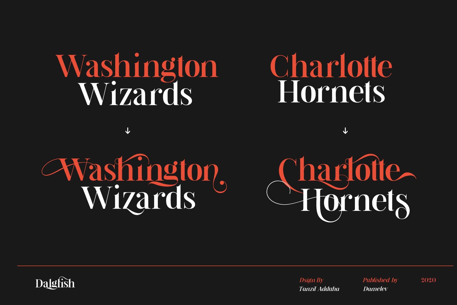 现代复古杂志海报标题徽标Logo设计衬线英文字体素材 Dalglish Typeface插图8