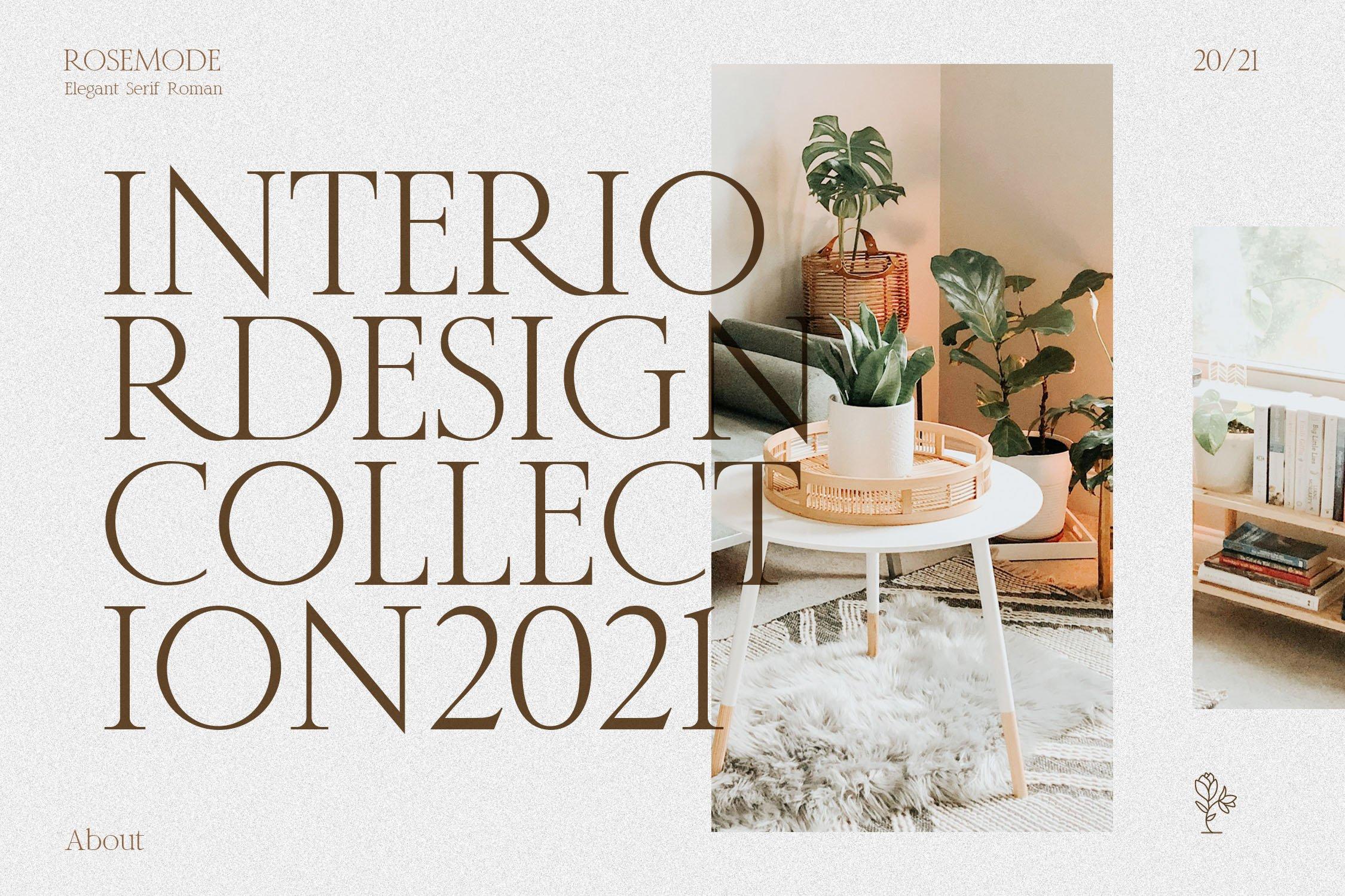 优雅经典杂志海报标题Logo设计衬线英文字体素材 Rosemode Font插图8