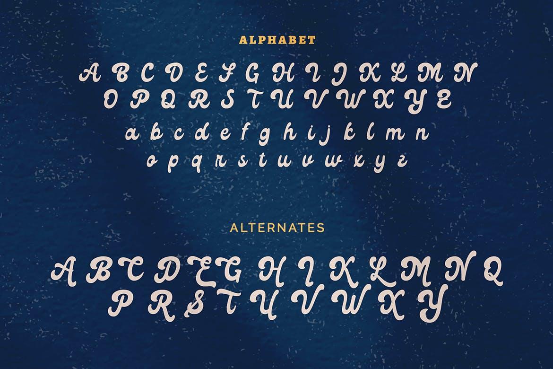 复古有趣海报标题徽标Logo手写英文字体素材 Lico – Vintage Retro Display Font插图8