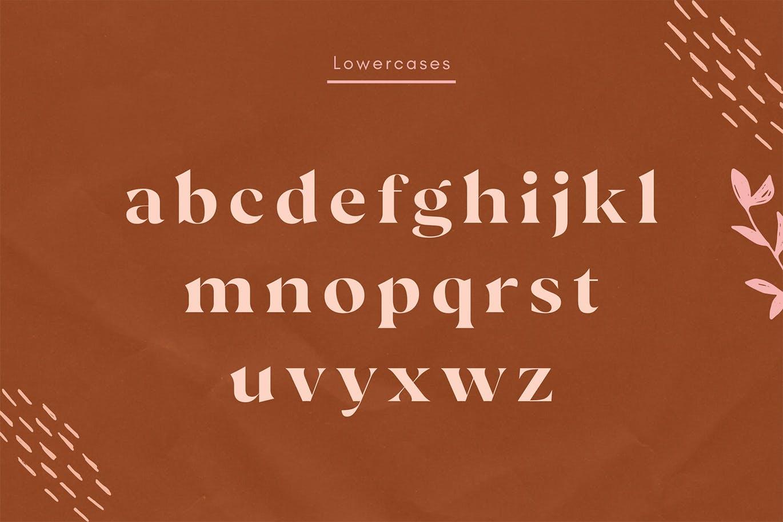现代极简复古品牌Logo杂志海报标题设计衬线英文字体素材 Vicky Regular – Modern Vintage Typeface插图8