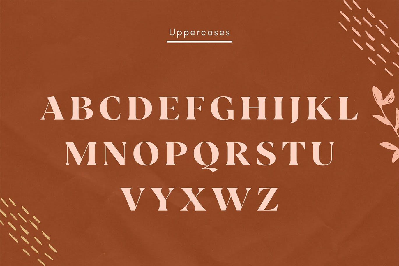 现代极简复古品牌Logo杂志海报标题设计衬线英文字体素材 Vicky Regular – Modern Vintage Typeface插图9