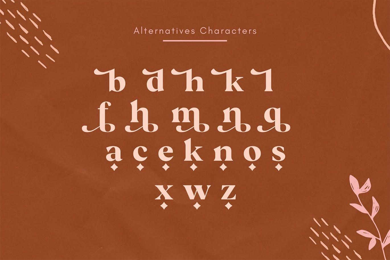 现代极简复古品牌Logo杂志海报标题设计衬线英文字体素材 Vicky Regular – Modern Vintage Typeface插图10