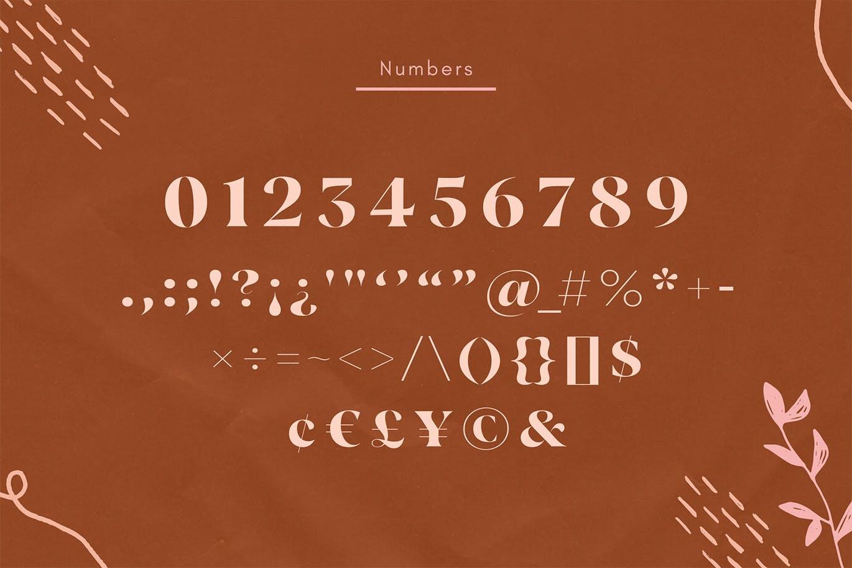现代极简复古品牌Logo杂志海报标题设计衬线英文字体素材 Vicky Regular – Modern Vintage Typeface插图11