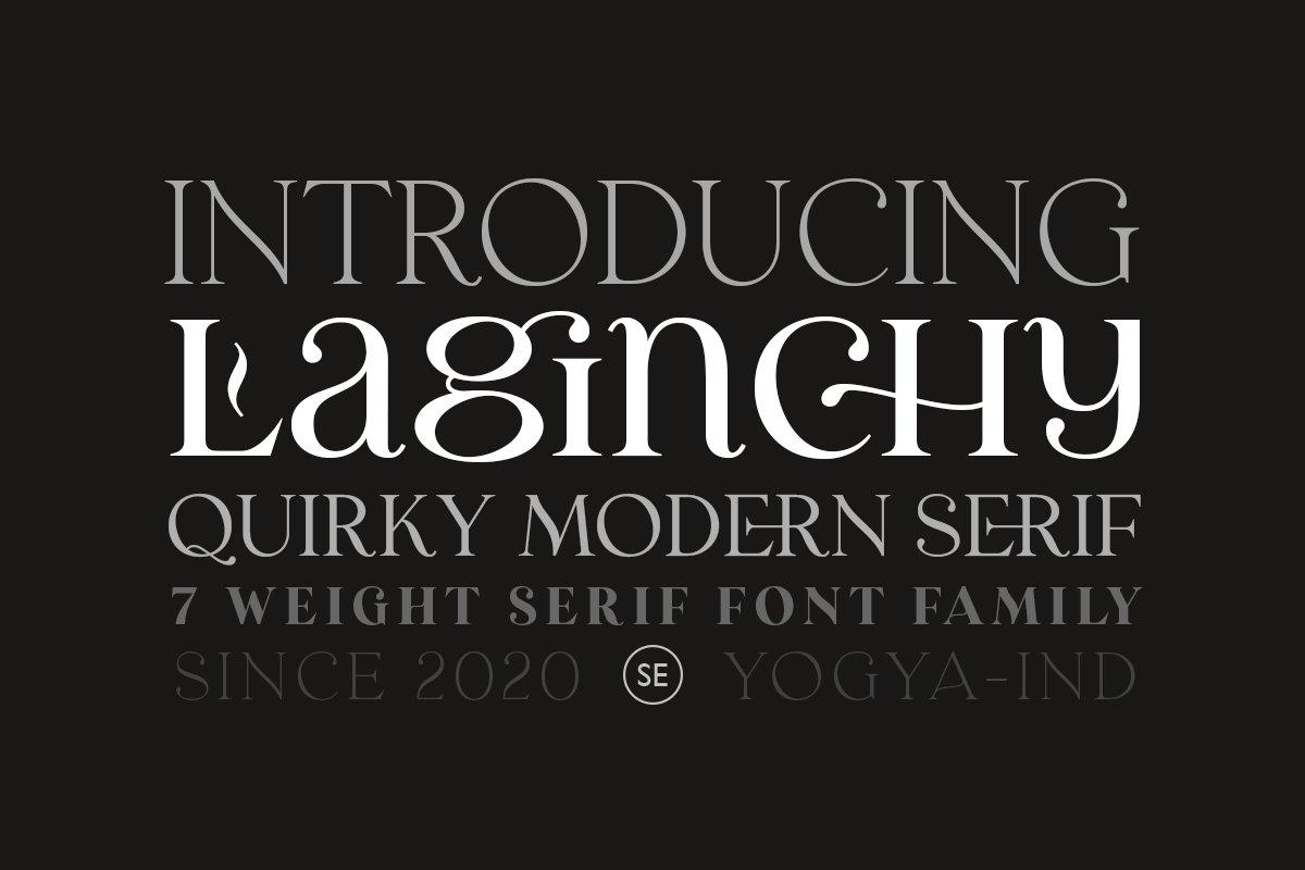 优雅古典轻奢时尚品牌Logo海报标题装饰英文字体素材 Laginchy – Quirky Serif插图10