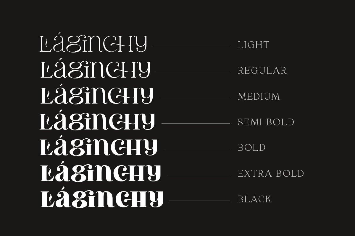 优雅古典轻奢时尚品牌Logo海报标题装饰英文字体素材 Laginchy – Quirky Serif插图2