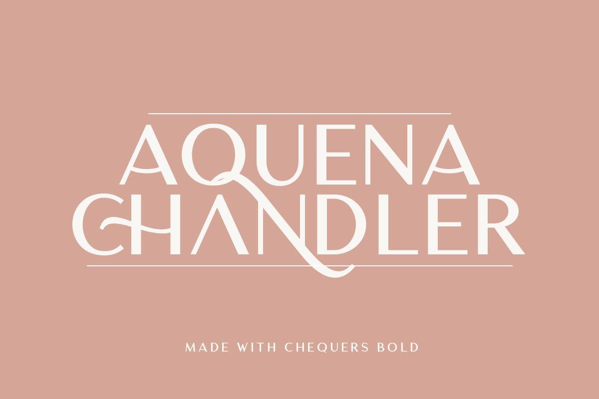 优雅轻奢时尚Logo杂志海报标题无衬线英文字体素材 Chequers – Modern Sans Serif插图1