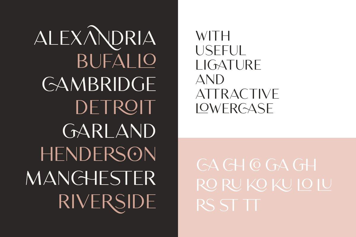 优雅轻奢时尚Logo杂志海报标题无衬线英文字体素材 Chequers – Modern Sans Serif插图4