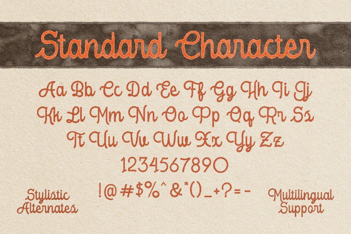复古优雅杂志标题徽标Logo手写英文字体素材 Londers Font插图4