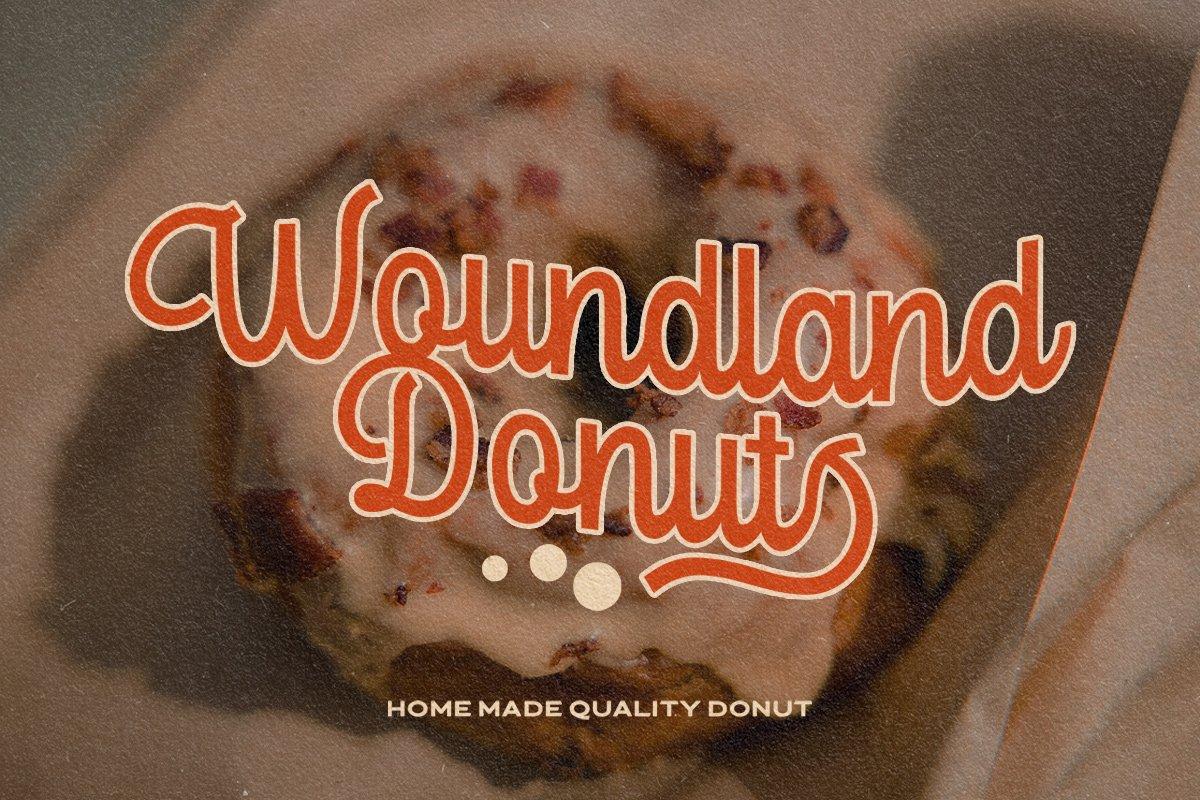 复古优雅杂志标题徽标Logo手写英文字体素材 Londers Font插图7