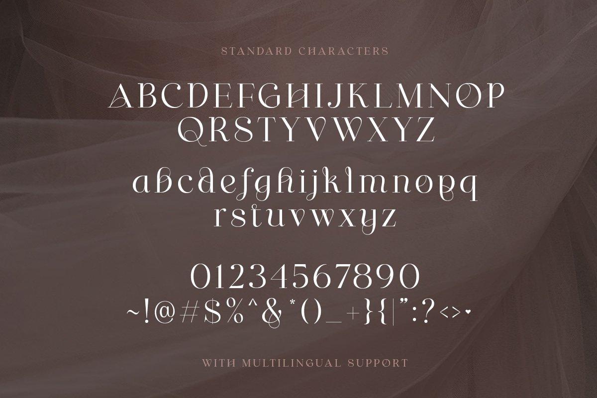 [单独购买] 优雅轻奢女性时尚品牌Logo海报杂志英文字体设计素材 Shaping Heart – Lovely Serif插图8