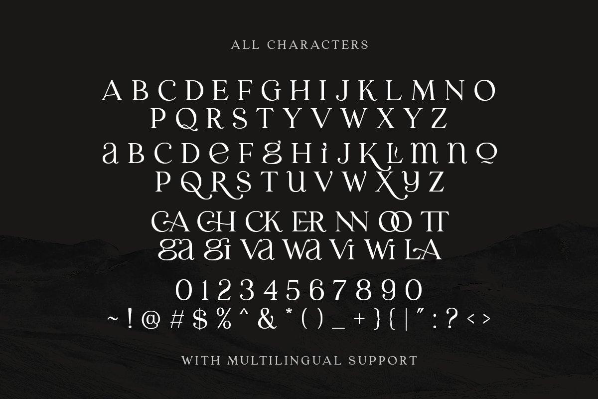 优雅古典轻奢时尚品牌Logo海报标题装饰英文字体素材 Laginchy – Quirky Serif插图9