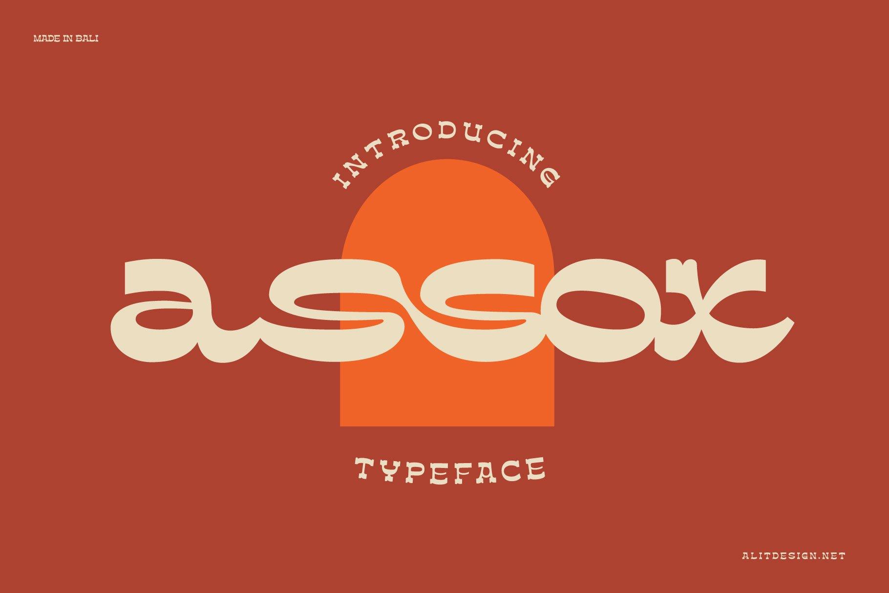 [单独购买] 潮流复古酸性逆反差海报标题Logo设计衬线英文字体素材 Assox Typeface插图
