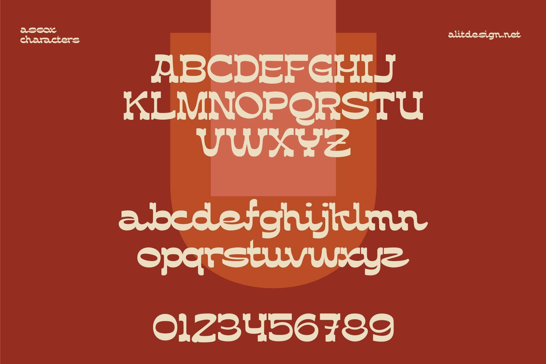[单独购买] 潮流复古酸性逆反差海报标题Logo设计衬线英文字体素材 Assox Typeface插图10