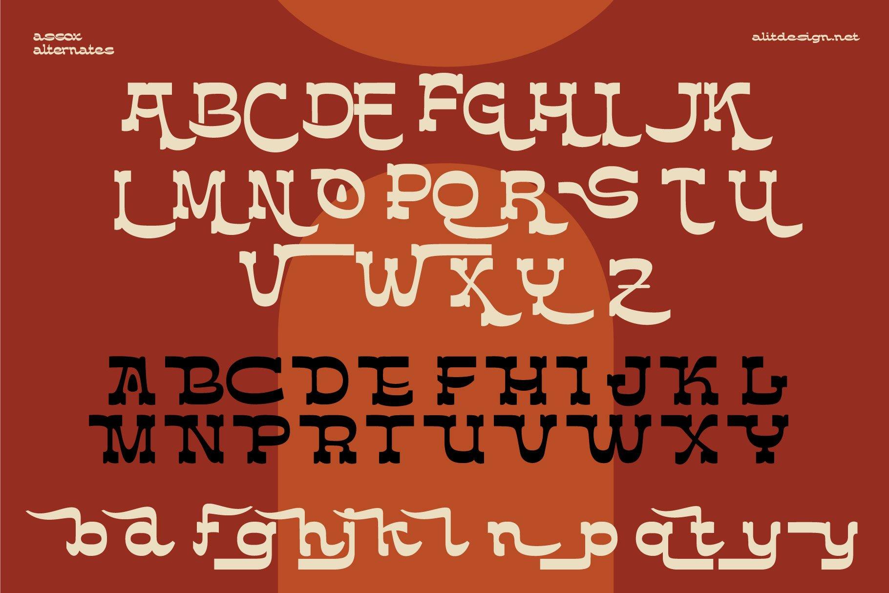 [单独购买] 潮流复古酸性逆反差海报标题Logo设计衬线英文字体素材 Assox Typeface插图11