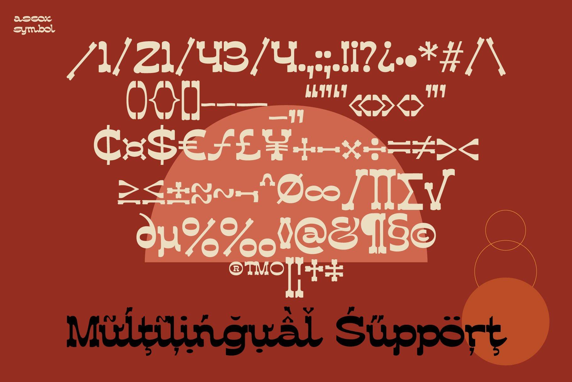 [单独购买] 潮流复古酸性逆反差海报标题Logo设计衬线英文字体素材 Assox Typeface插图14