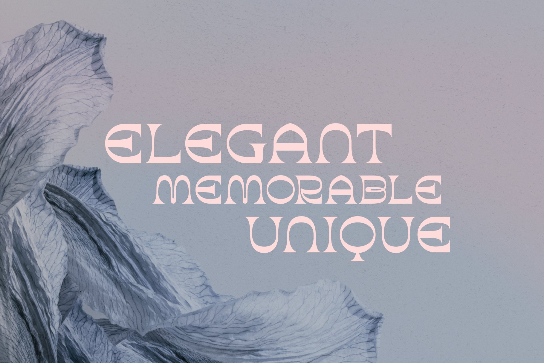 潮流复古酸性逆反差标题徽标Logo设计衬线英文字体素材 Aurora Font插图2