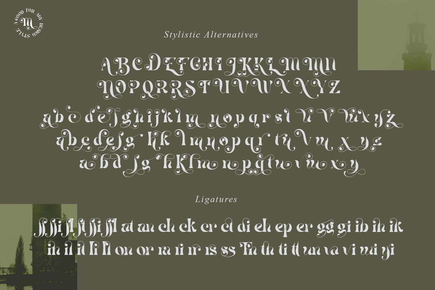 现代优雅杂志海报标题Logo设计衬线英文字体素材 Mistic Typeface插图9
