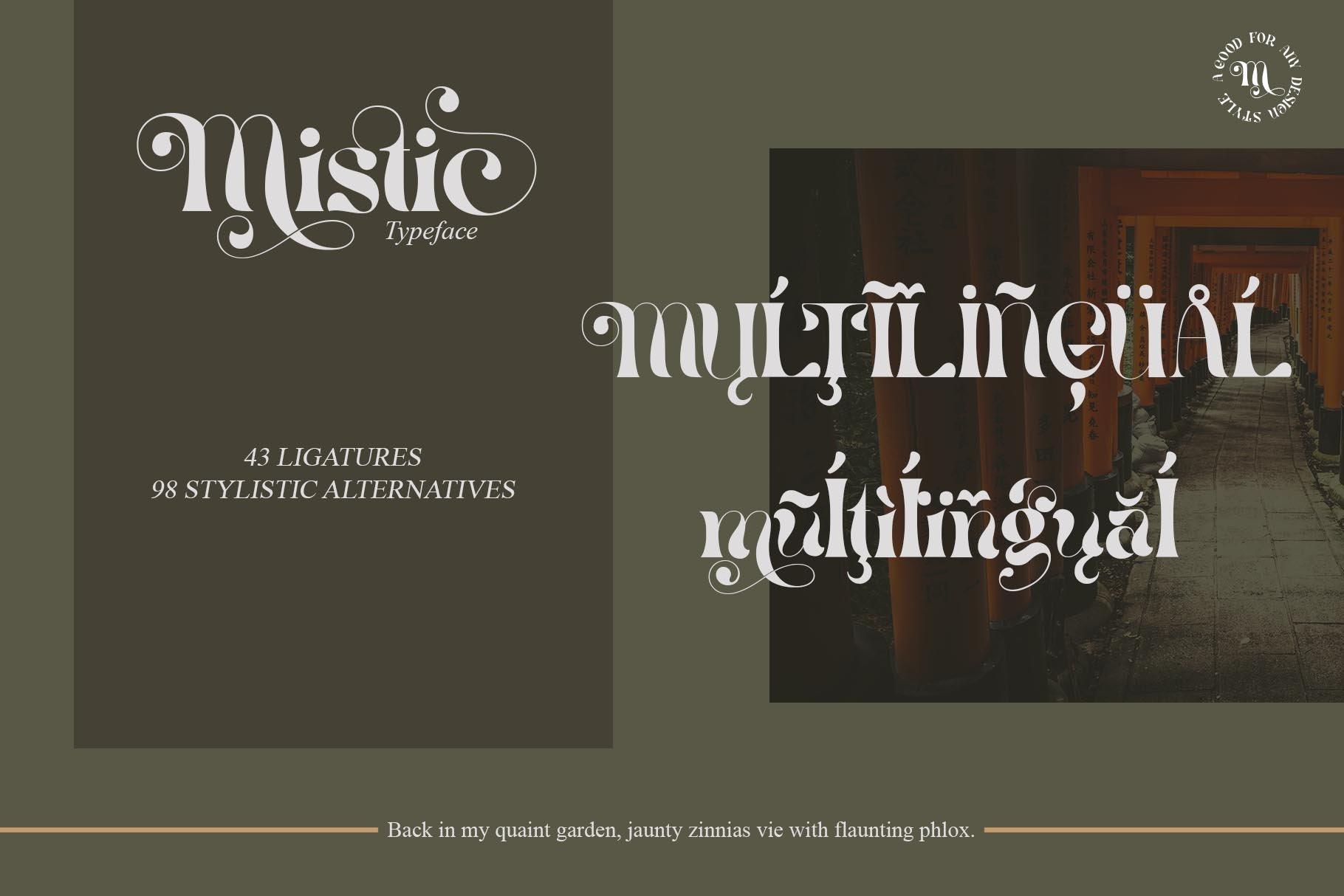 现代优雅杂志海报标题Logo设计衬线英文字体素材 Mistic Typeface插图10