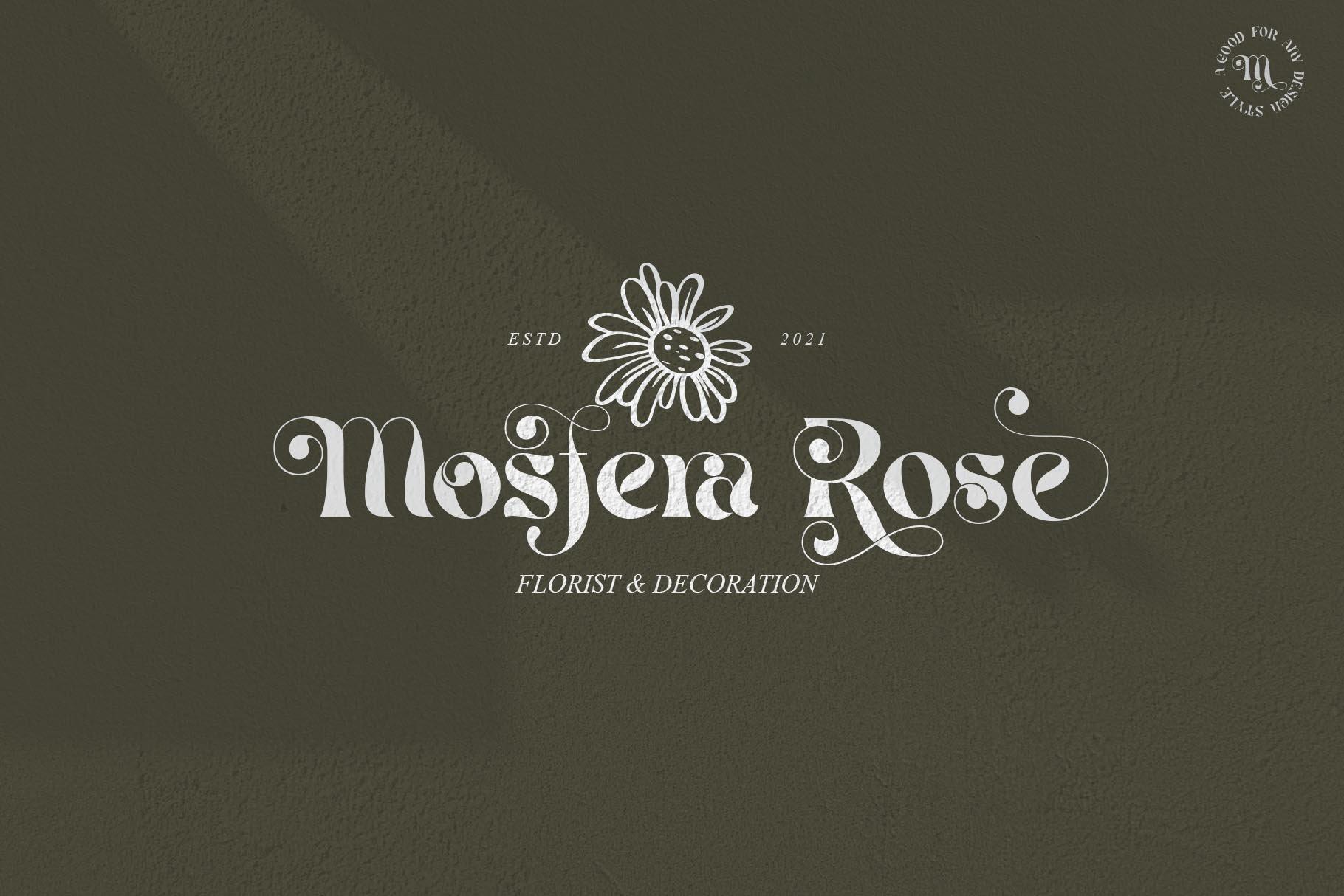 现代优雅杂志海报标题Logo设计衬线英文字体素材 Mistic Typeface插图3