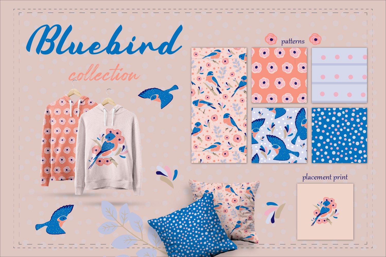 可爱鸟类手绘剪贴画矢量设计素材合集 Backyard Birds Collections插图1
