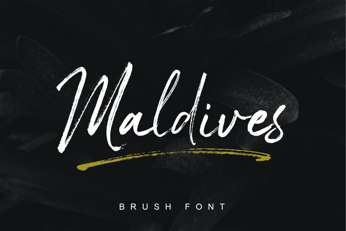 时尚优雅杂志海报标题品牌logo设计手写字体脚本 Maldives Handbrush Font插图