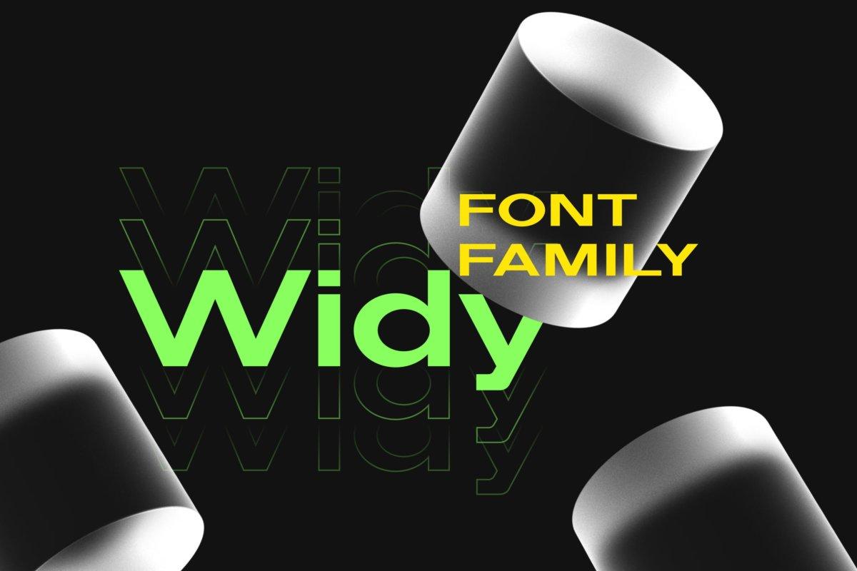 现代简约海报标题品牌logo设计无衬线英文字体素材 Widy Font Family插图