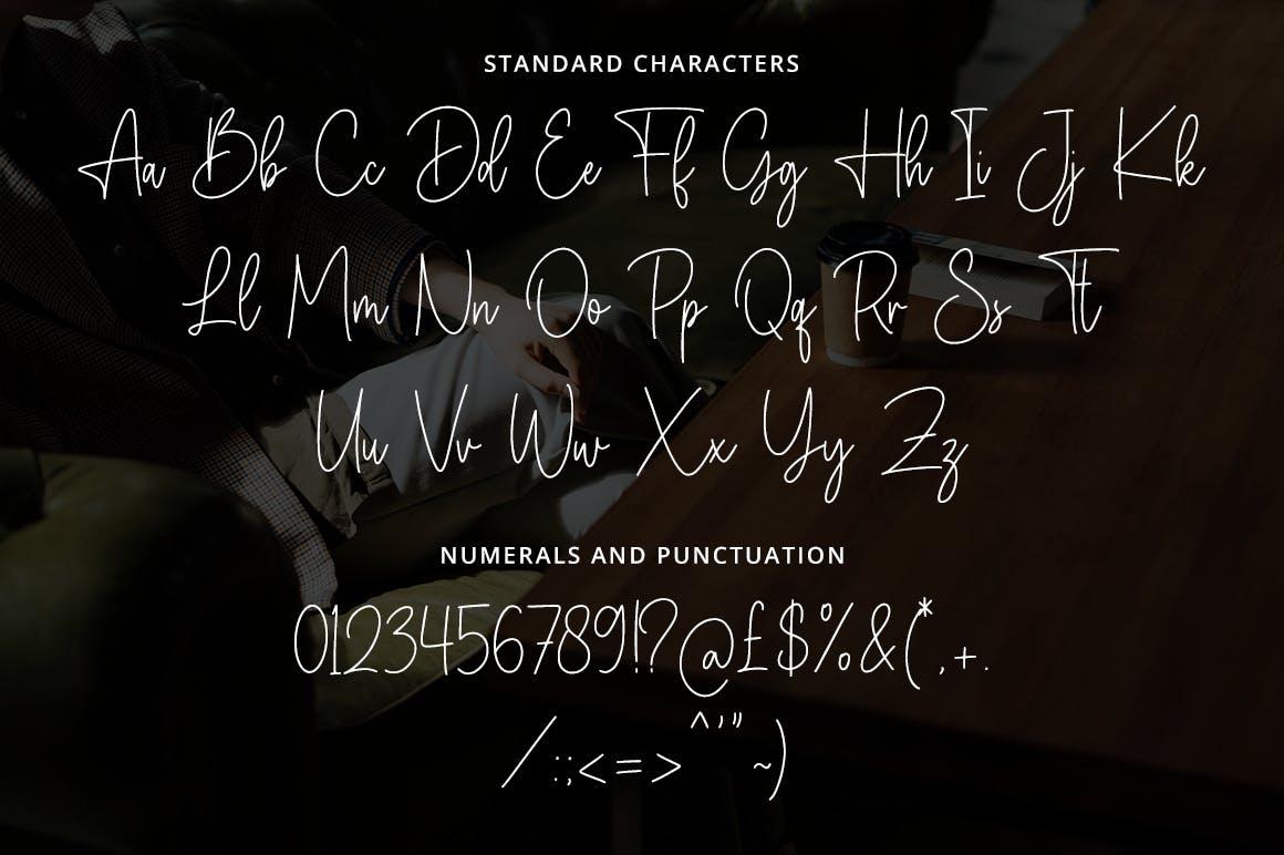 潮流复古品牌徽标设计签名手写字体 The Classic Signature插图10