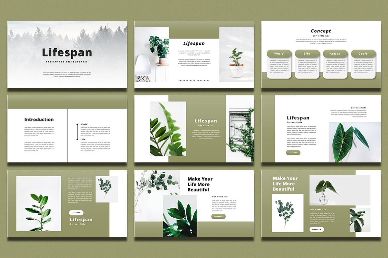 绿色系简约作品集演示文稿设计模板 Lifespan – PowerPoint Template插图1