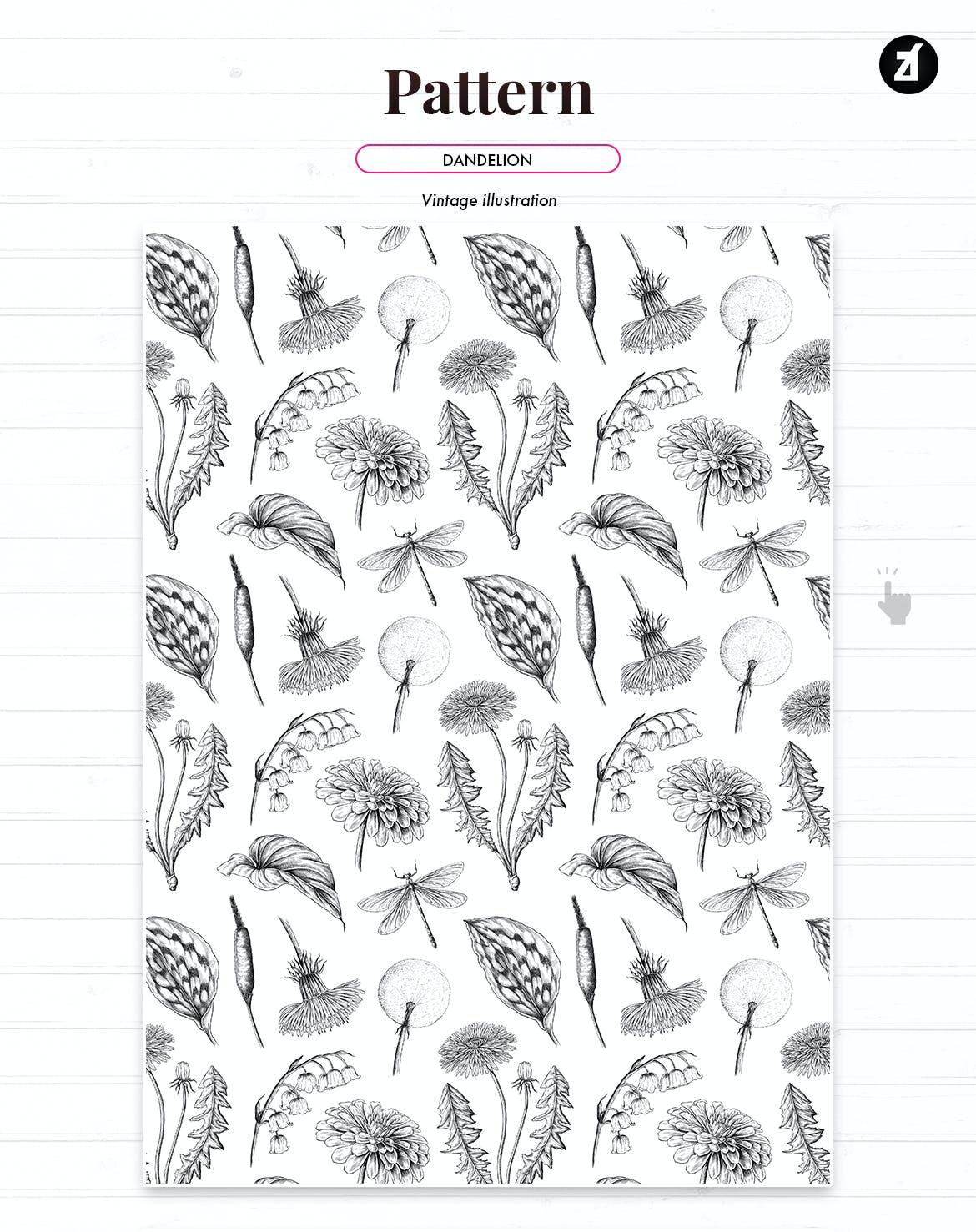 复古蒲公英手绘插画背景图案PS设计素材 Dandelion vintage illustration and pattern插图1