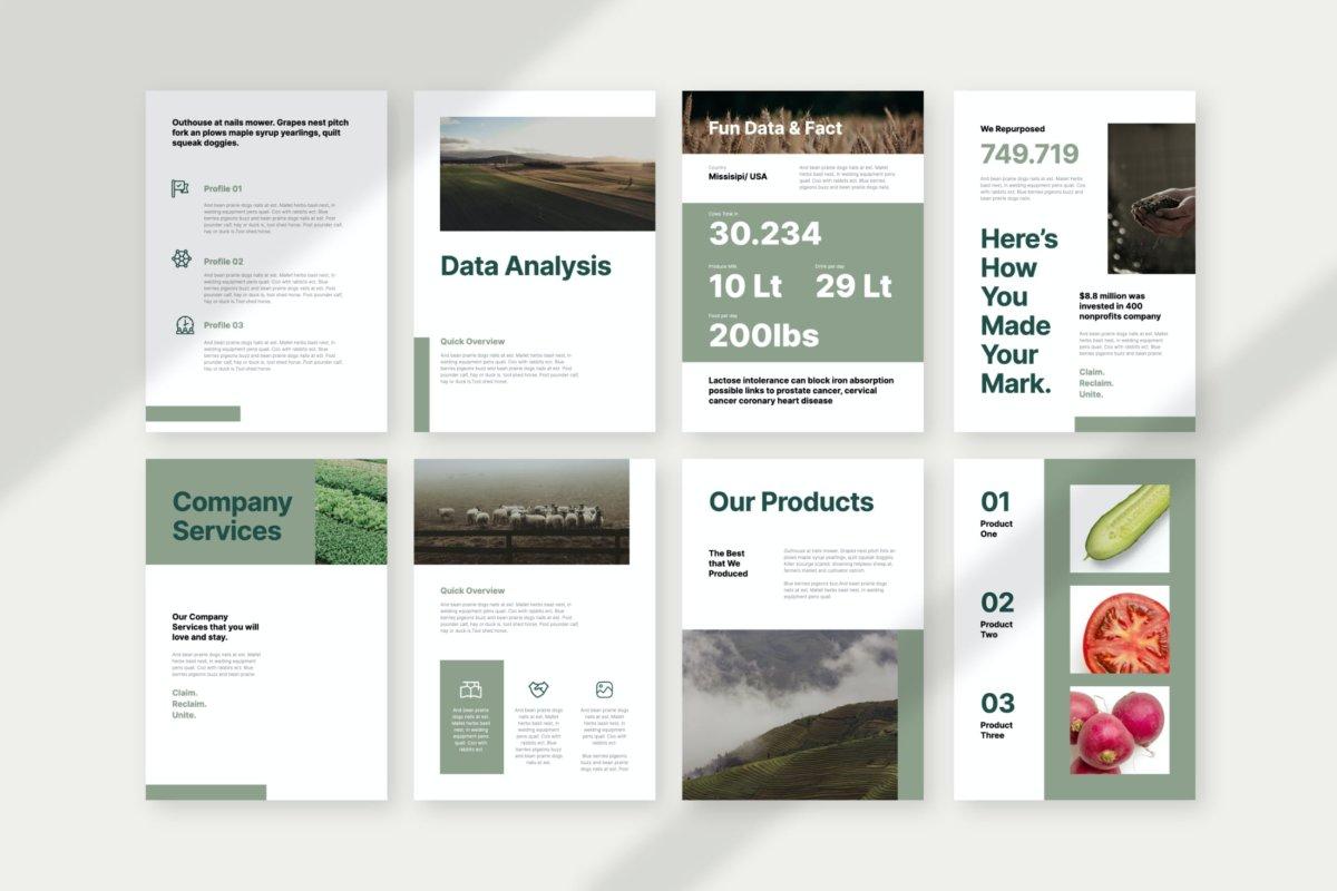 极简主义垂直公司业务营销策划演示文稿PPT+Keynote设计模板 Agrifuture – Vertical Company Profile Presentation插图2