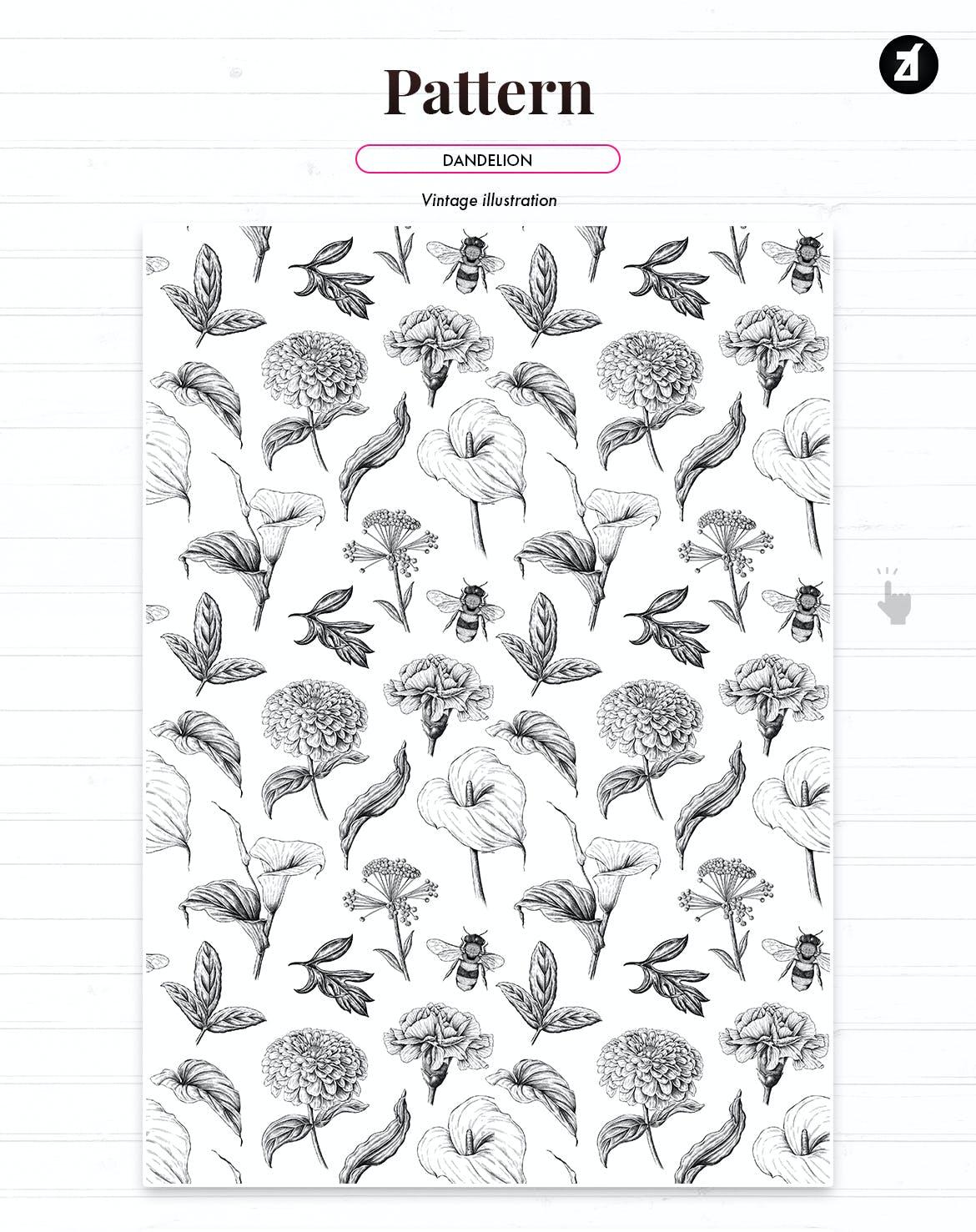复古蒲公英手绘插画背景图案PS设计素材 Dandelion vintage illustration and pattern插图2