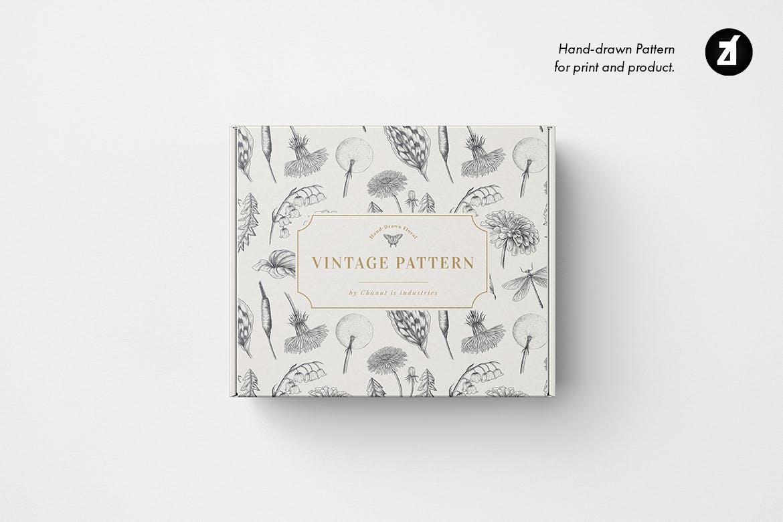 复古蒲公英手绘插画背景图案PS设计素材 Dandelion vintage illustration and pattern插图4