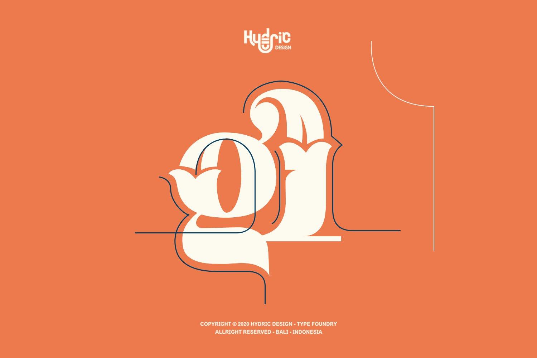 优雅海报标题徽标Logo设计花卉装饰英文字体下载 Kyra Vaglo Font插图6