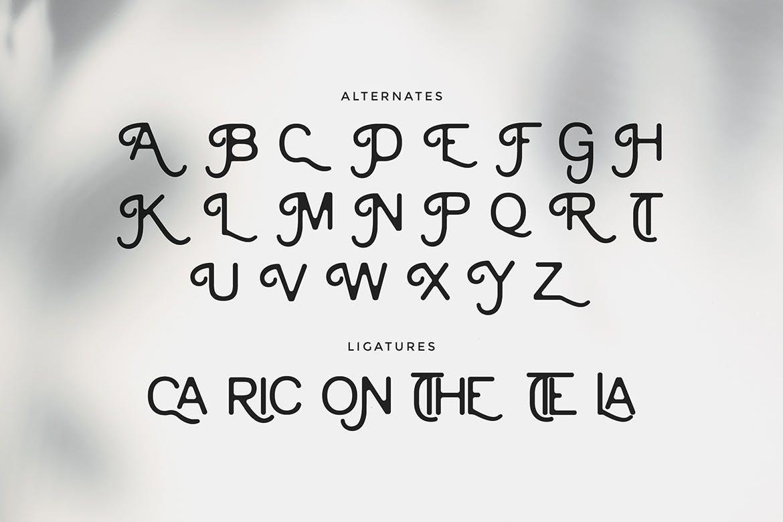 复古优雅杂志海报标题徽标Logo设计无衬线英文字体下载 Cainamons – Vintage Font DR插图8
