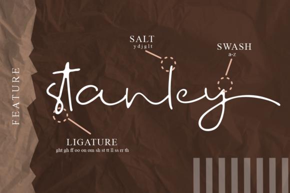 时尚优雅标题徽标Logo设计手写英文字体 Fostone Natural Signature Font插图2