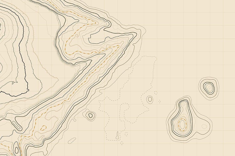 10款抽象地形图线条背景矢量设计素材 Topographic Map Backgrounds插图4
